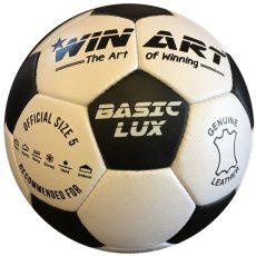 Winart Basic Lux bőr focilabda 5-ös méret