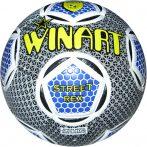 Winart Street Rex 5-ös méretű focilabda
